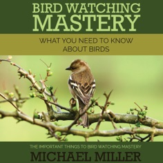 Bird Watching Mastery: What You Need to Know about Birds: The Important Things to Bird Watching Mastery