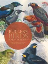 Bullers Birds of New Zealand
