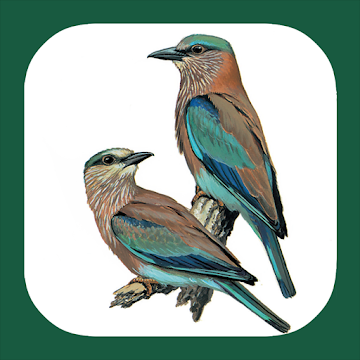 Birds of Europe & Palearctic