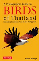 Photographic Guide to the Birds of Thailand, ebook