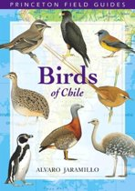 Birds of Chile
